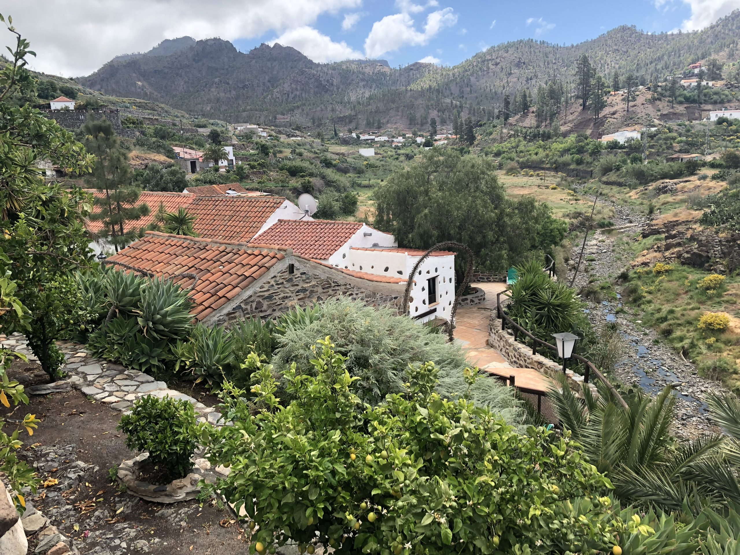 Canarian Finca with Bungalows in the Nature Park of Presa de Chira